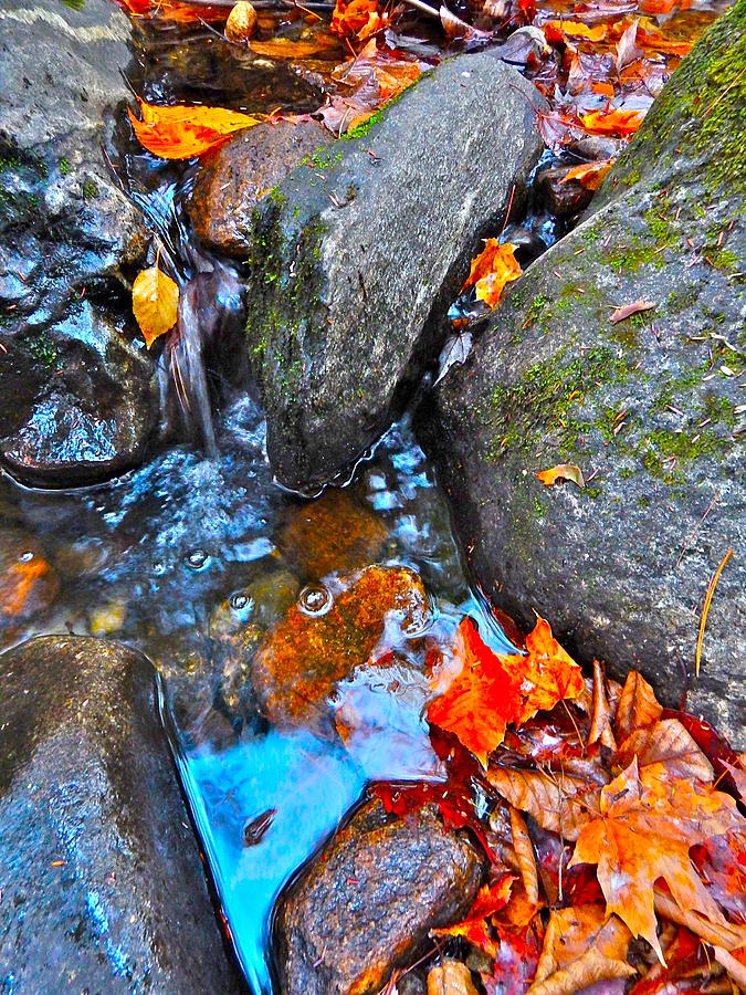 Autumn Landscape Photograph - Autumn B 2015 117 by George Ramos