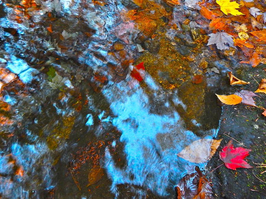 Autumn Landscape Photograph - Autumn B 2015 132 by George Ramos