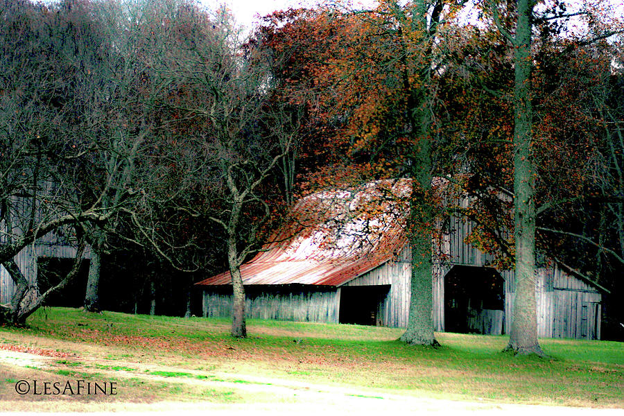 Autumn Barn in Alabama by Lesa Fine
