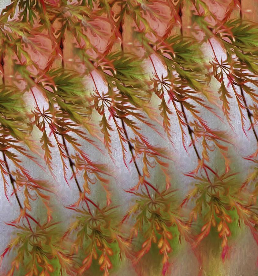 Nature Photograph - Autumn Beauty by Karen Jensen