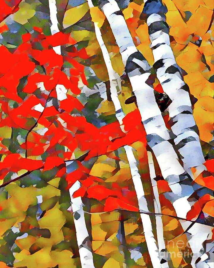 Landscape Digital Art - Autumn Birch by David Boudreau