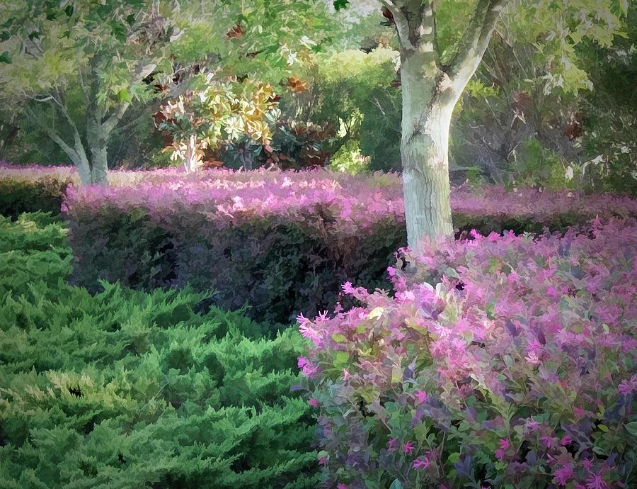 Autumn Blooms by Paul Schreiber