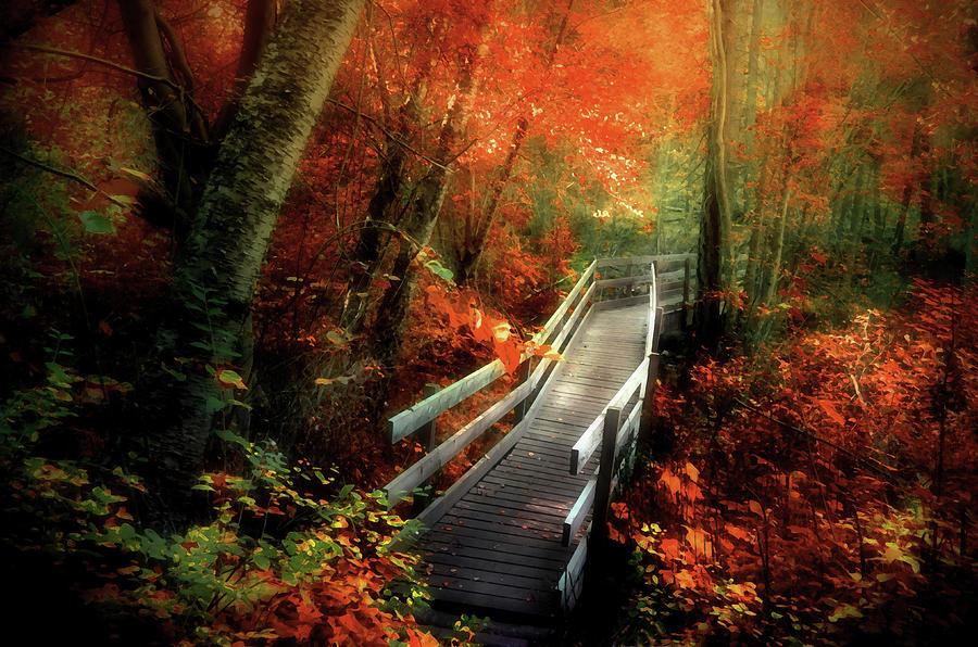 Autumn Photograph - Autumn Boardwalk by Tara Turner