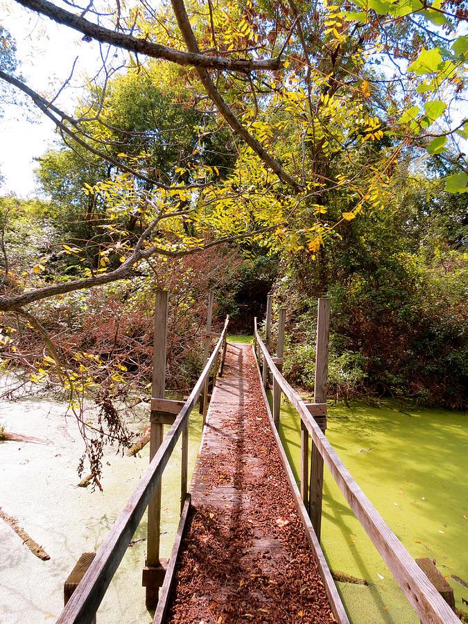 Autumn Photograph - Autumn Bridge by Azthet Photography