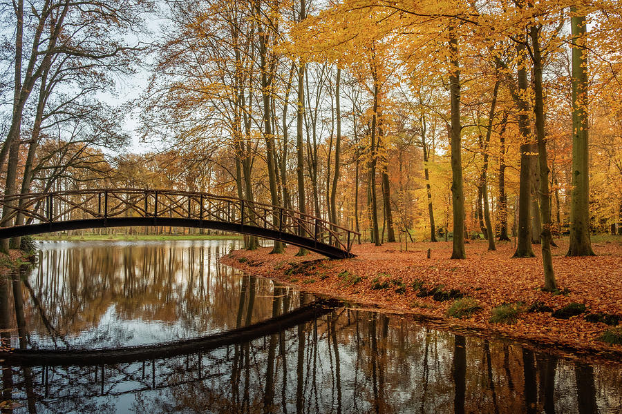 Autumn bridge by Mario Visser