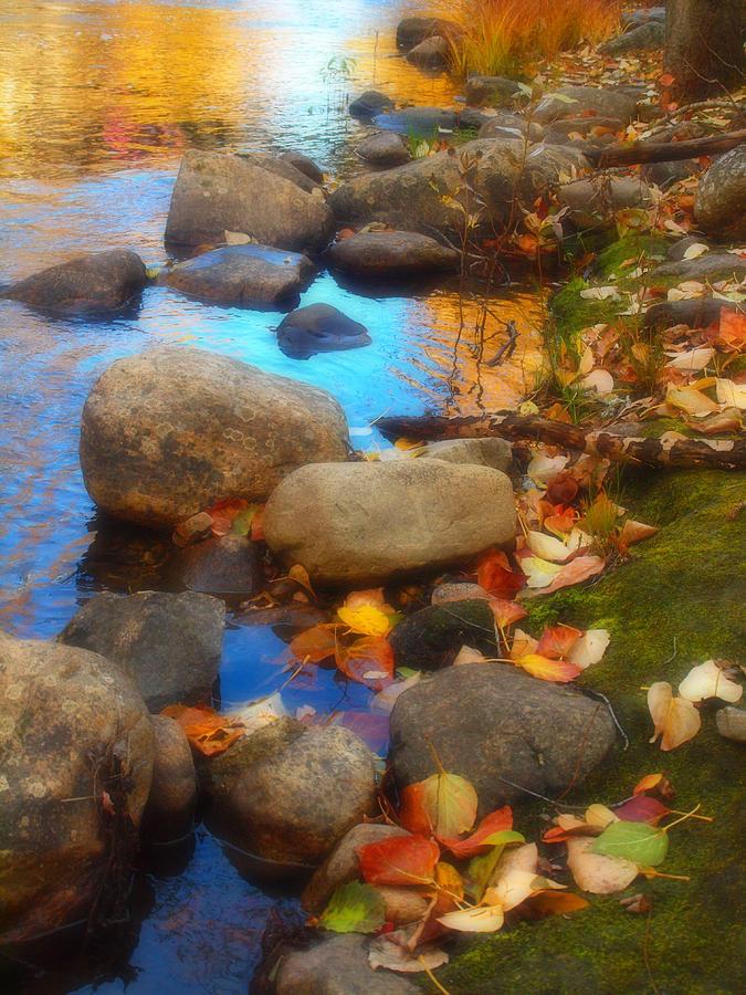 Autumn Photograph - Autumn By The Creek by Tara Turner