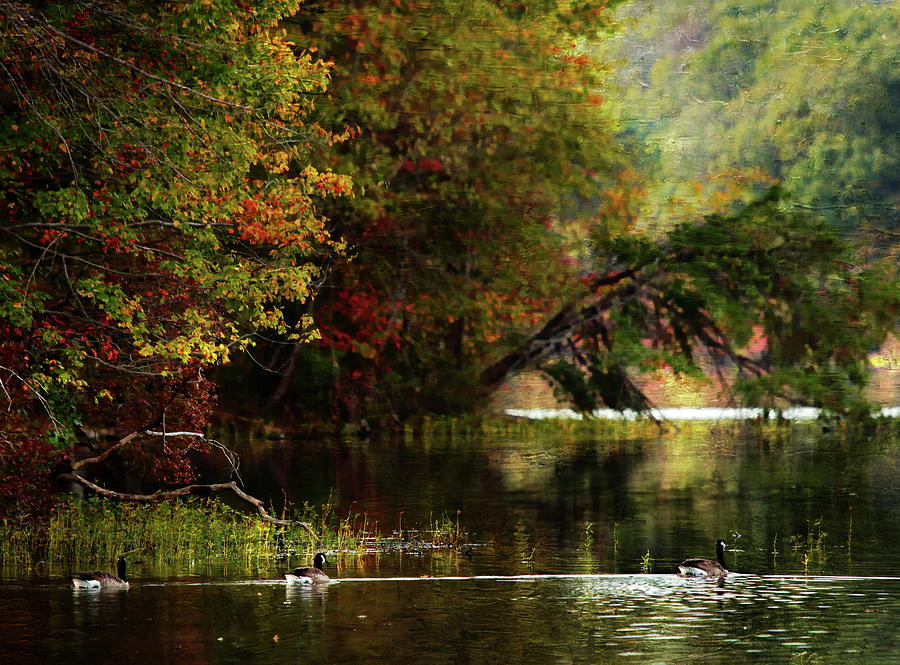 Autumn By The Lake Photograph by Scott Fracasso