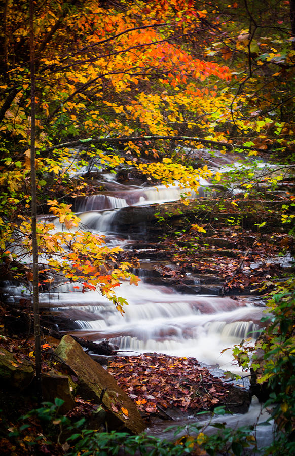 Autumn Cascade  by Parker Cunningham