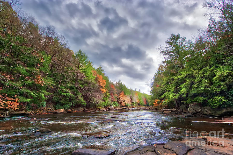 Autumn colors ablaze on a wild river in the Appalachian mountain by Patrick Wolf