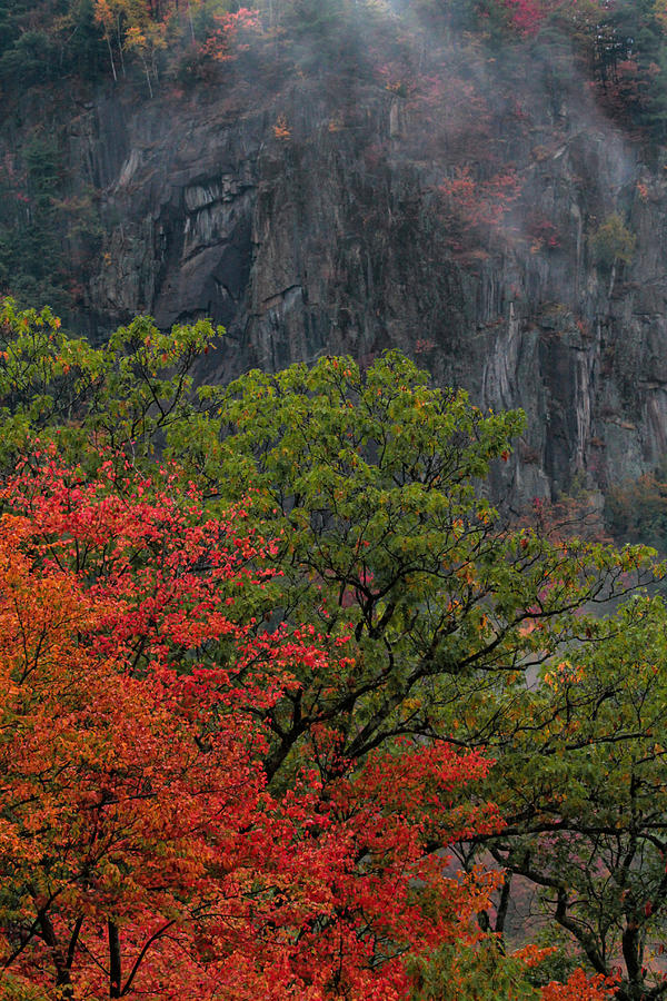 Autumn Colors At Crawford Notch Photograph