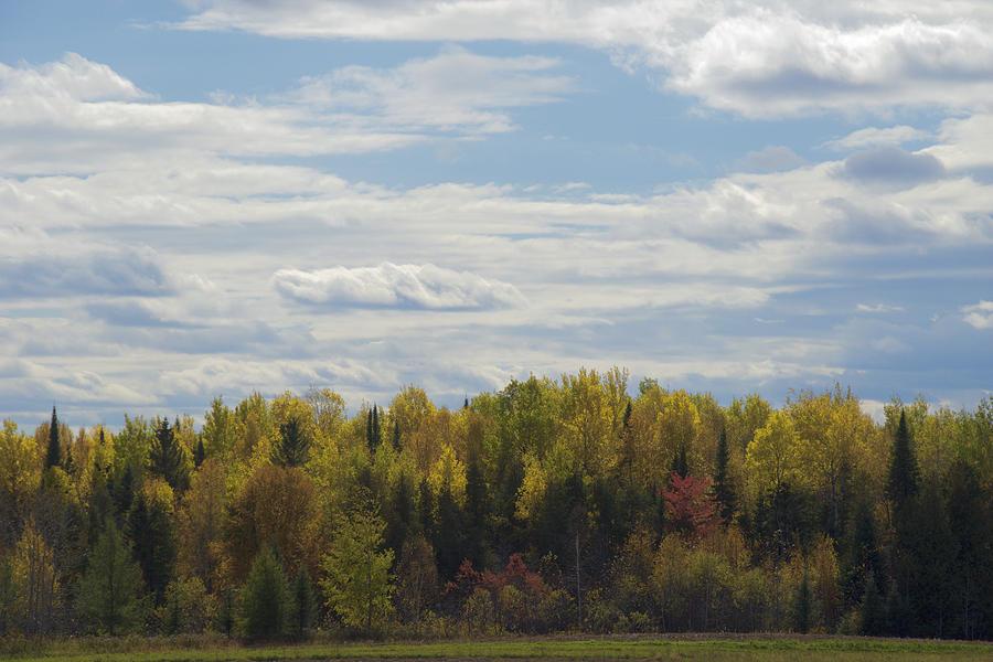 Autumn Colors by Chris Alberding