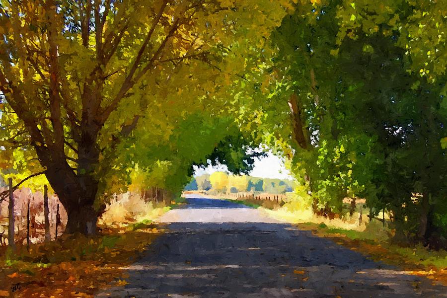 Autumn Photograph - Autumn Country Lane by Linda Koelbel