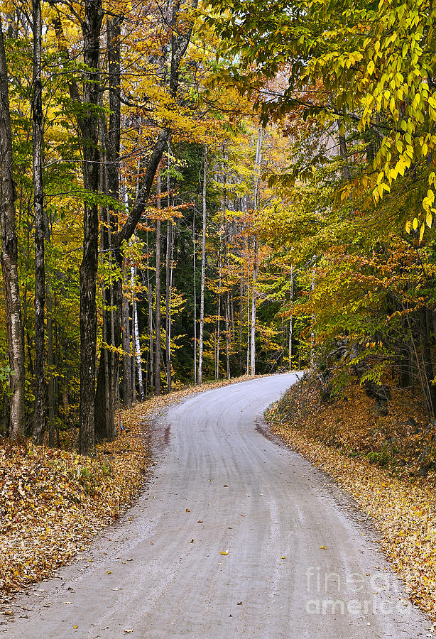 New England Photograph - Autumn Country Road by John Greim