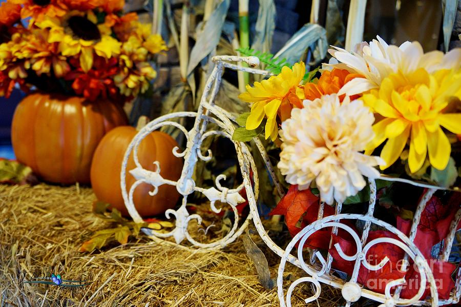 Autumn Days2 Photograph