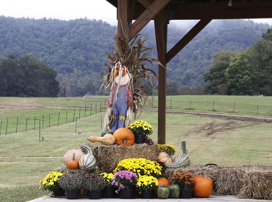 Autumn Display Photograph by Linda A Waterhouse