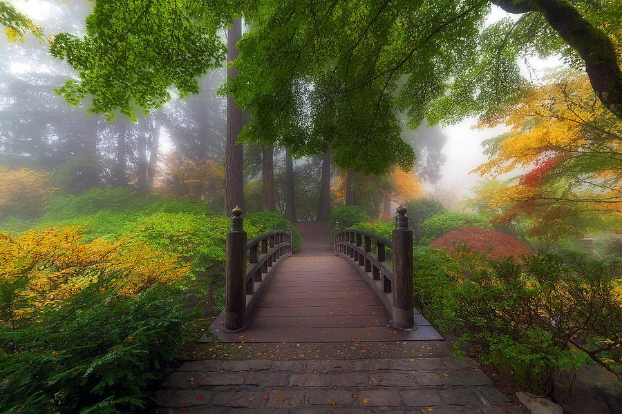 Moon Bridge Photograph - Autumn Dream by David Gn