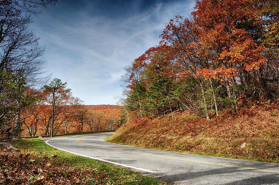 Autumn Dreams Around The Bend Photograph