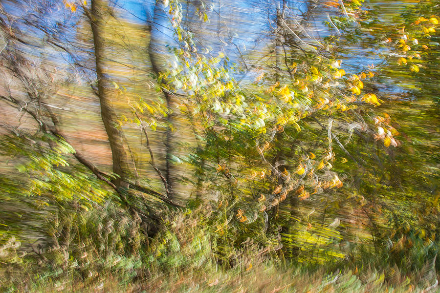 Autumn Drive in Virginia by Cyndi Goetcheus Sarfan