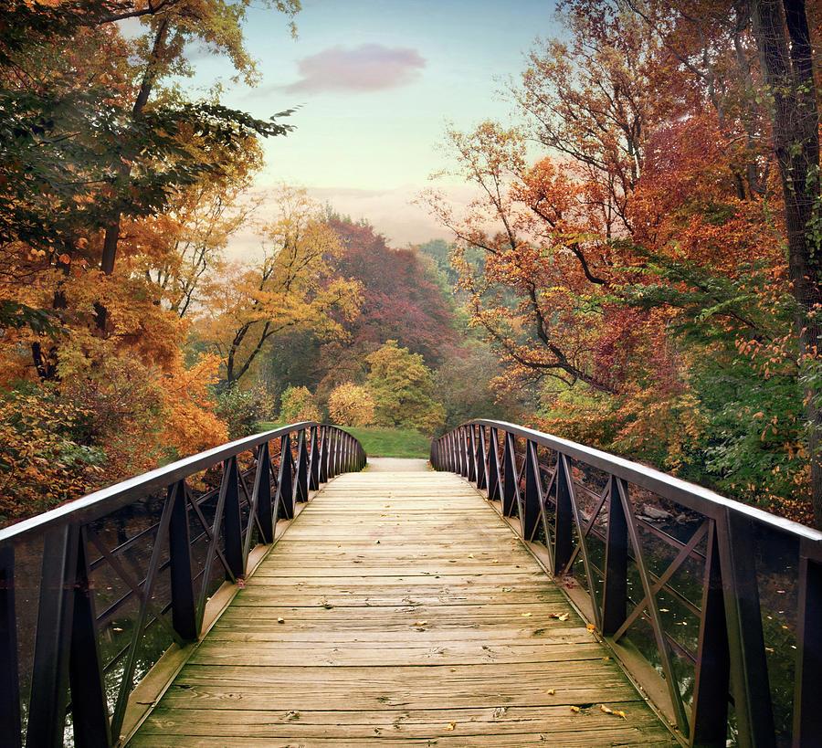 Autumn Encounter Photograph