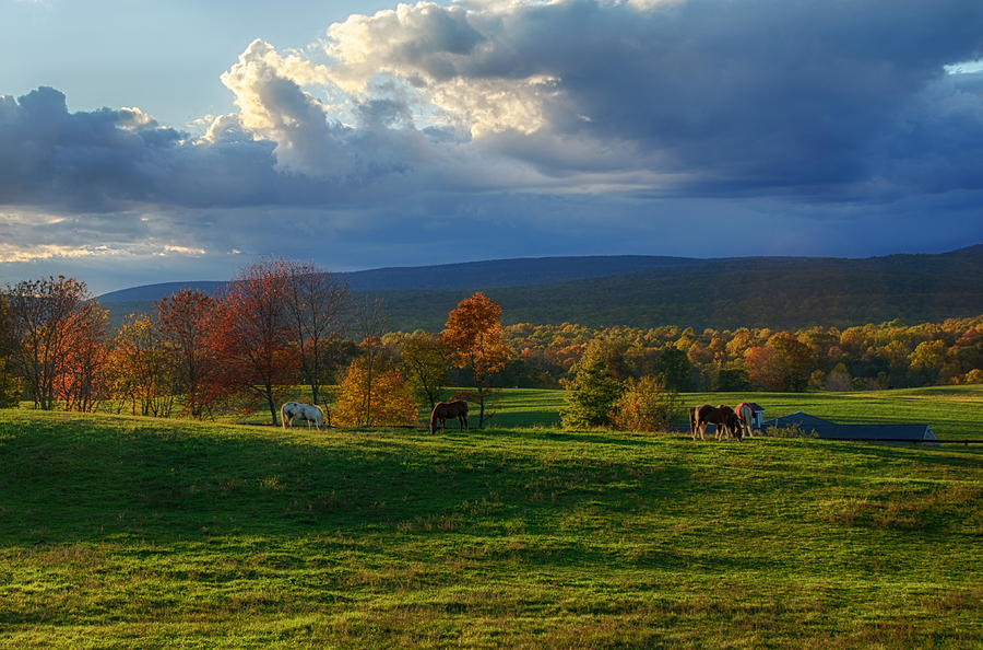 Farm Photograph - Autumn Evening by Eleanor Bortnick