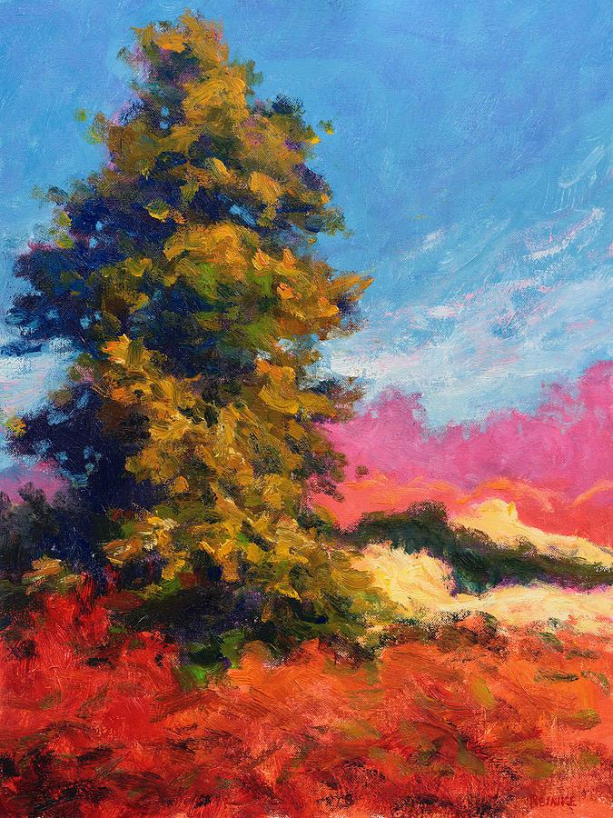 Autumn Evergreen  by Vernon Reinike