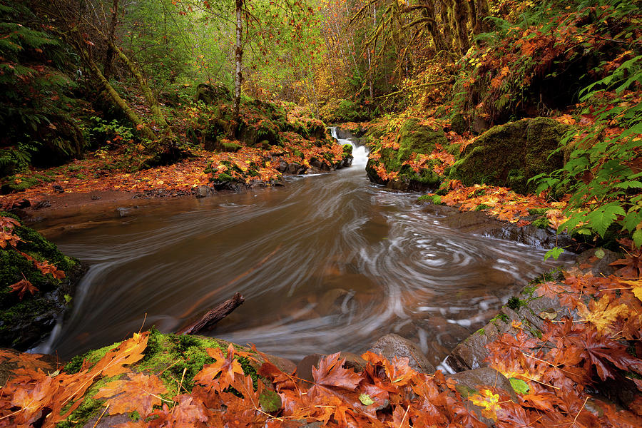 Autumn Flow by Andrew Kumler