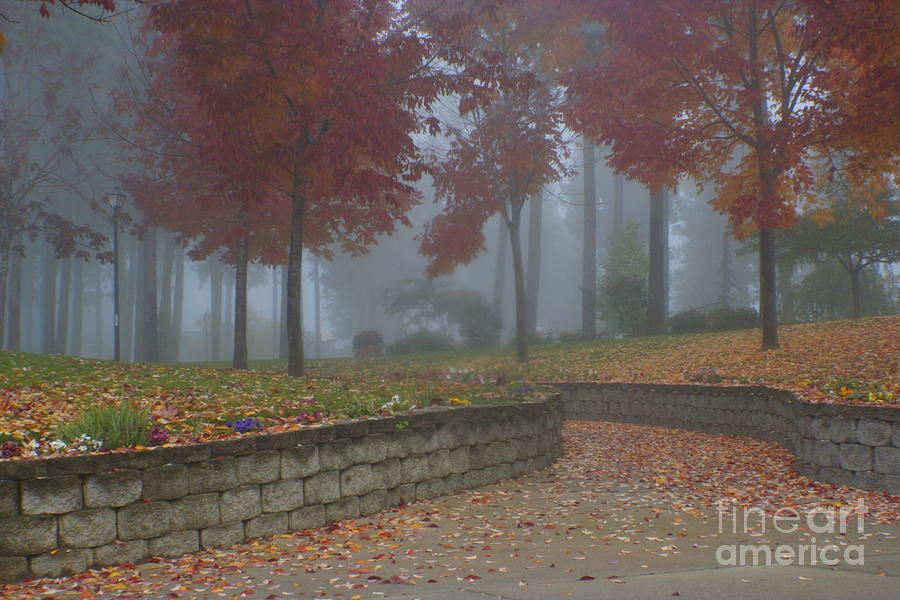 Autumn Photograph - Autumn Fog by Idaho Scenic Images Linda Lantzy