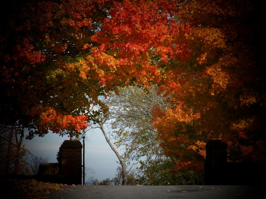 Autumn Photograph - Autumn Gate by Joyce Kimble Smith