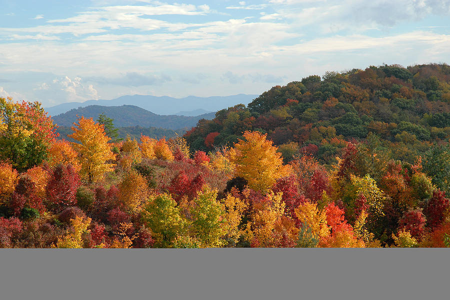 Fall Foliage Photograph - Autumn Glory by Alan Lenk