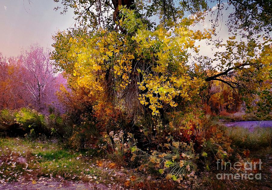 Yellows Digital Art - Autumn Glory by Annie Gibbons