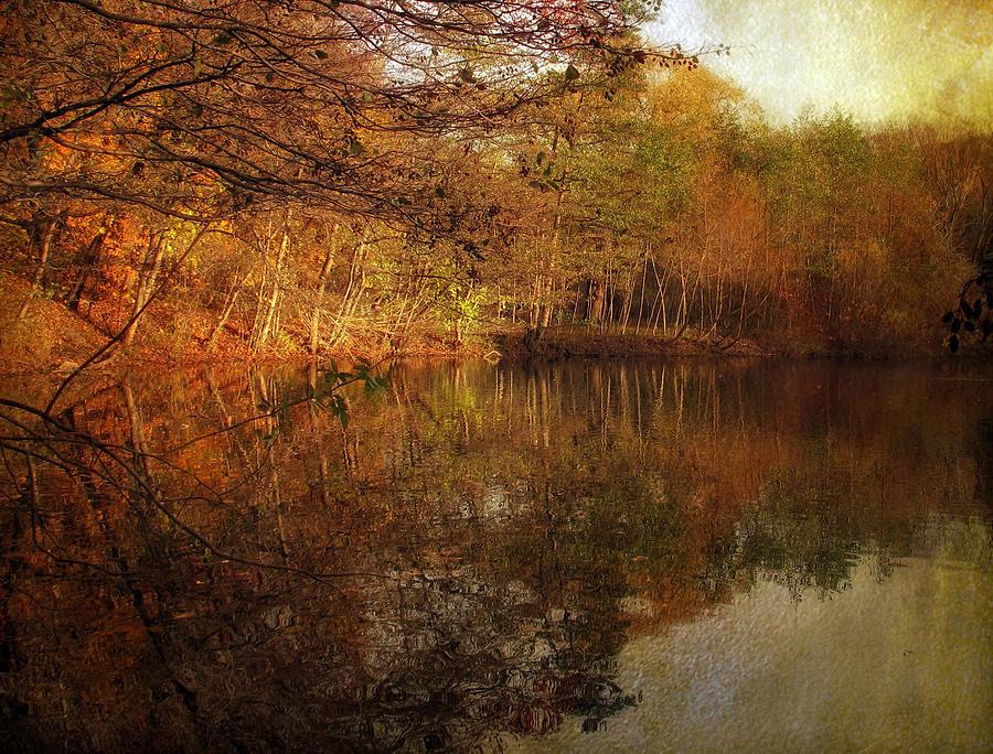 Autumn Photograph - Autumn Glow by Jessica Jenney