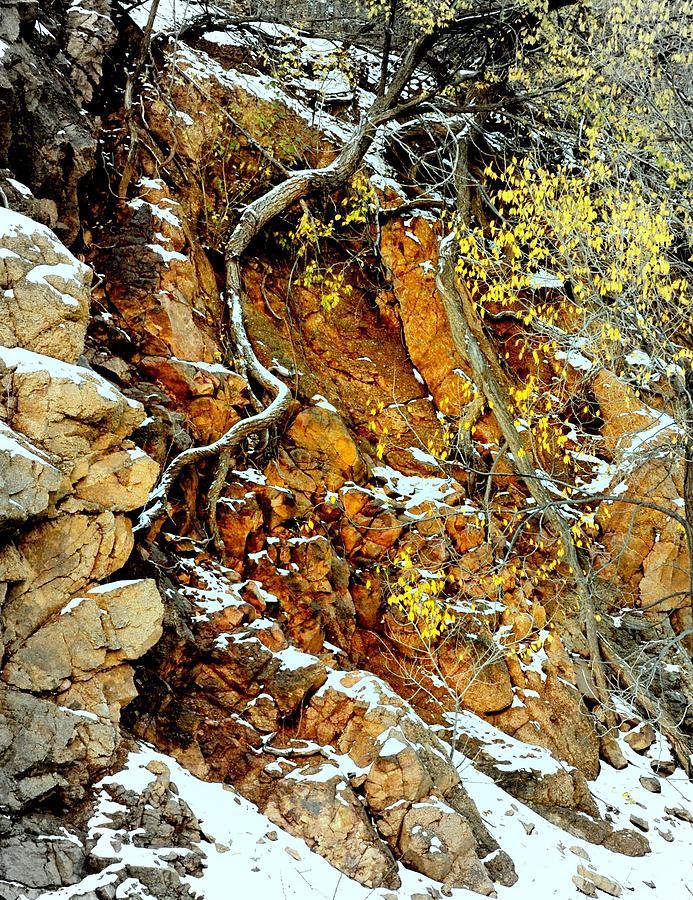 Rocks Photograph - Autumn High.. by Al  Swasey