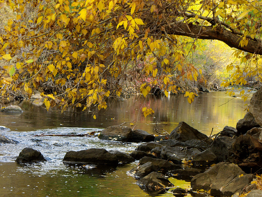 River Photograph - Autumn Hues by Jan  Tribe