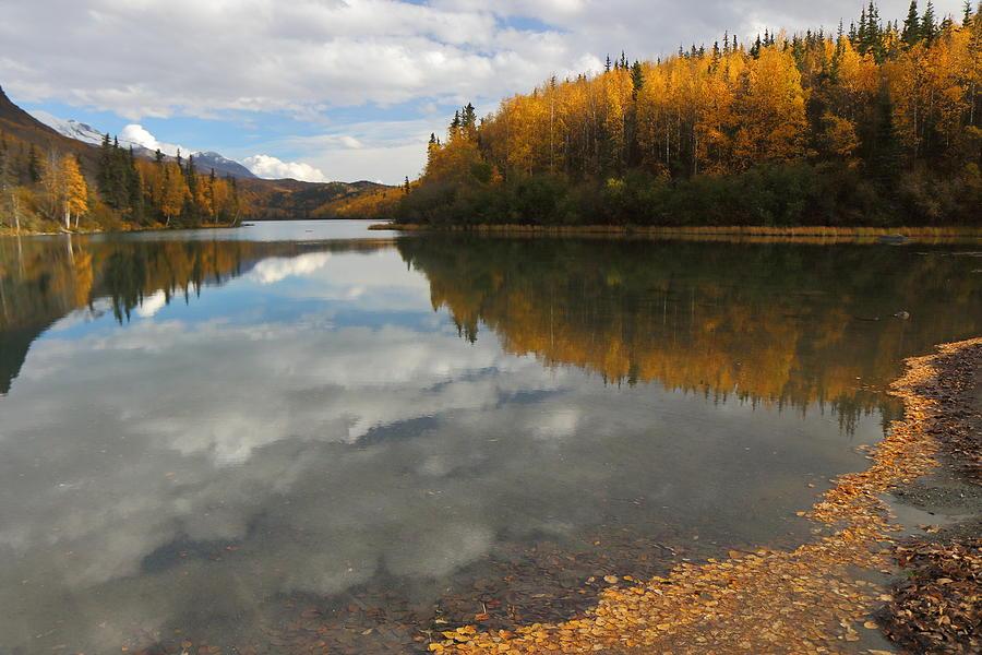 Autumn In Alaska by Steve Wolfe