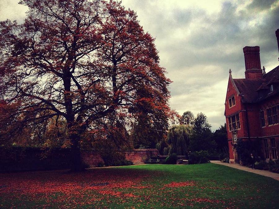 Autumn Photograph - Autumn In Cambridge  by Rossana Azzoni