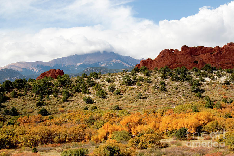 Autumn In Garden Of The Gods Photograph