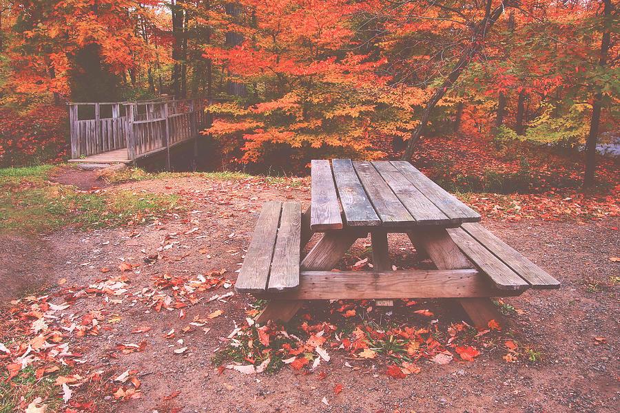 Picnics Photograph - Autumn In High Bridge by Pat Abbott