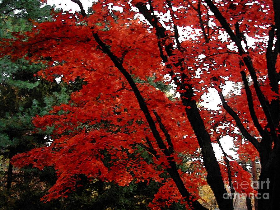 Autumn Photograph - Autumn In New England by Melissa A Benson