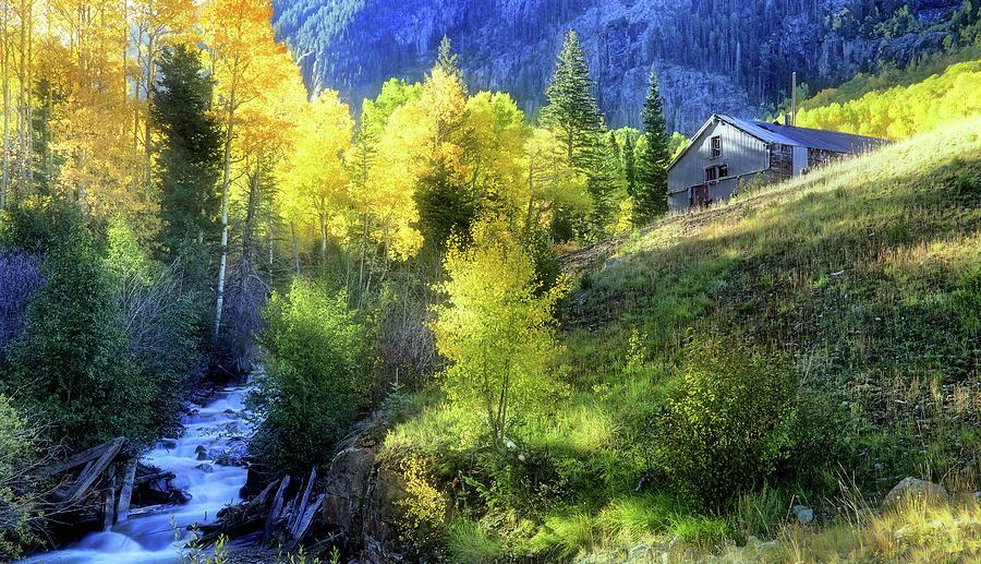 Colorado Photograph - Autumn In Ophir - Colorado - Aspens by Jason Politte