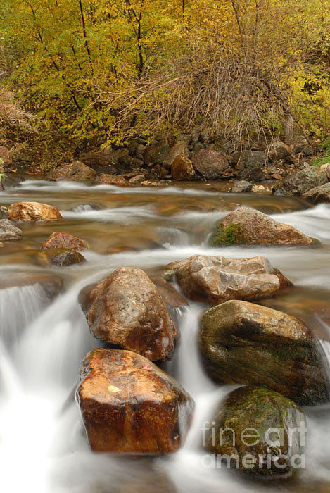 Utah Photograph - Autumn In Provo Canyon by Dennis Hammer