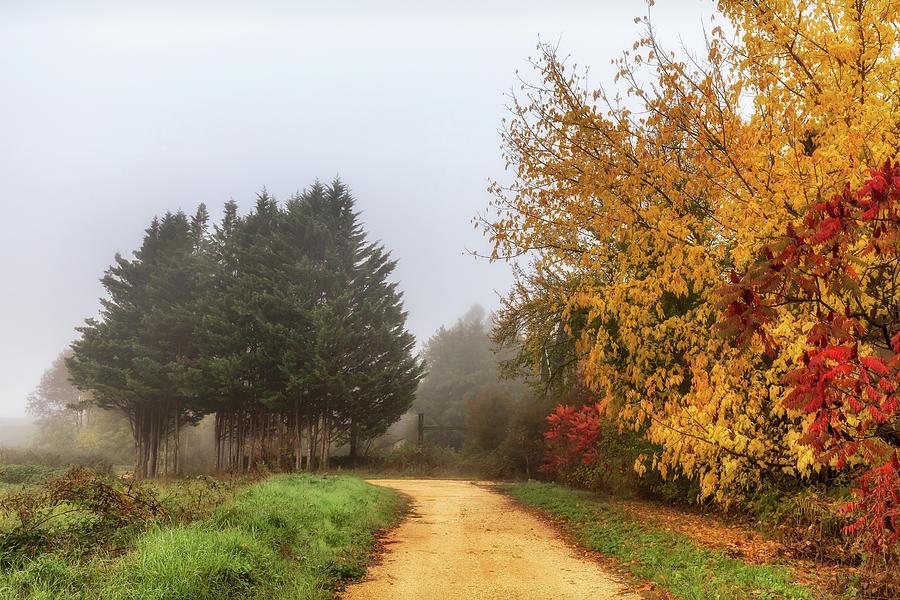 Autumn Scene Photograph - Autumn in Sauveterre by Georgia Fowler