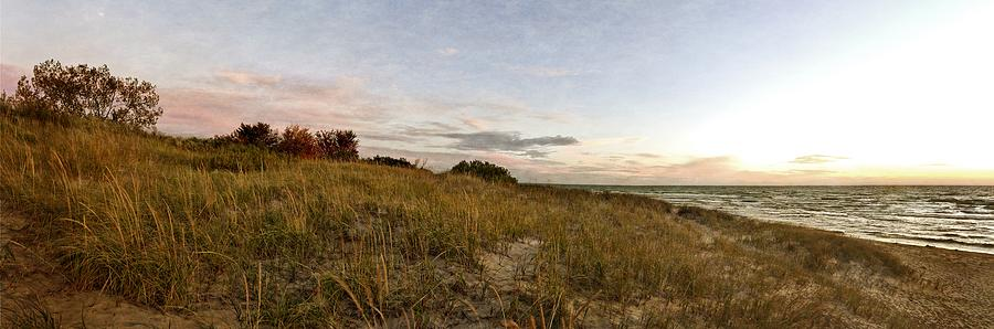Autumn in the Dunes by Michelle Calkins