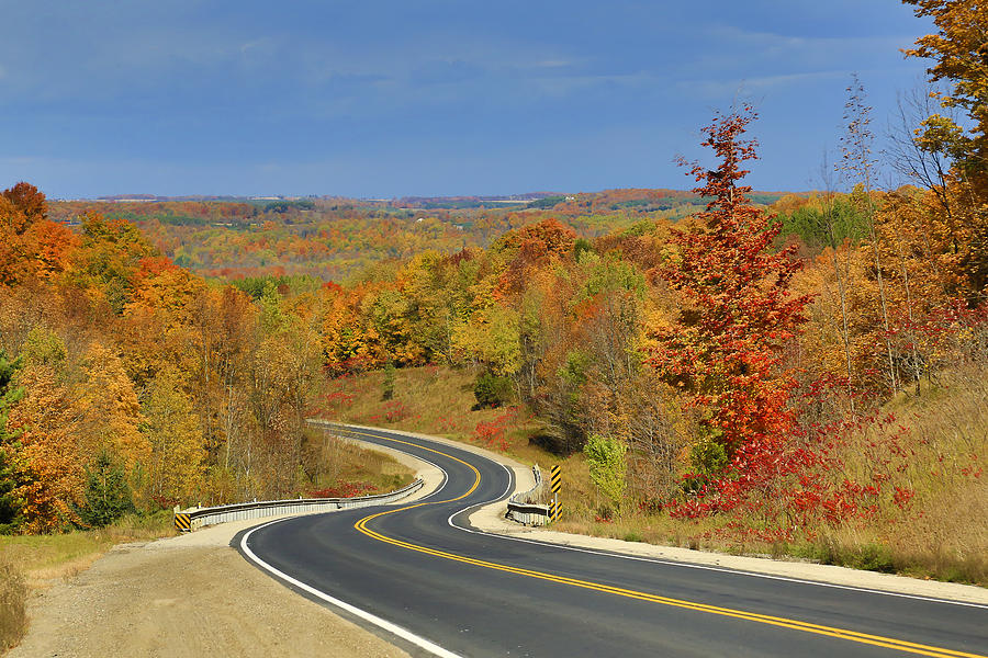 Mono Photograph - Autumn In The Hockley Valley by Gary Hall