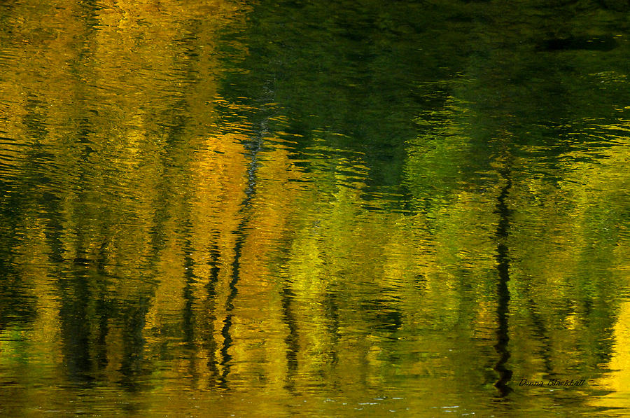 Water Photograph - Autumn In Truckee by Donna Blackhall