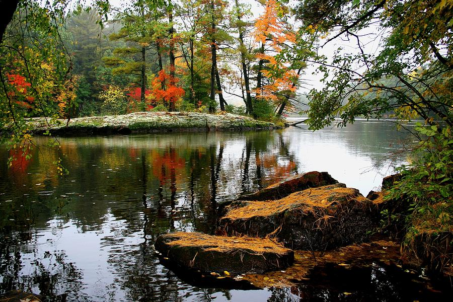 Autumn Island by Neal Nealis