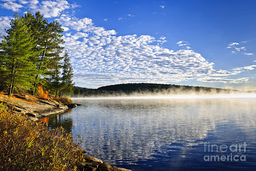 Foggy Photograph - Autumn lake shore with fog by Elena Elisseeva