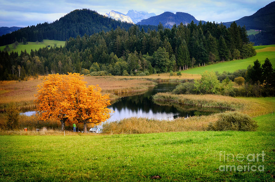 Autumn Landscape And Lake Photograph