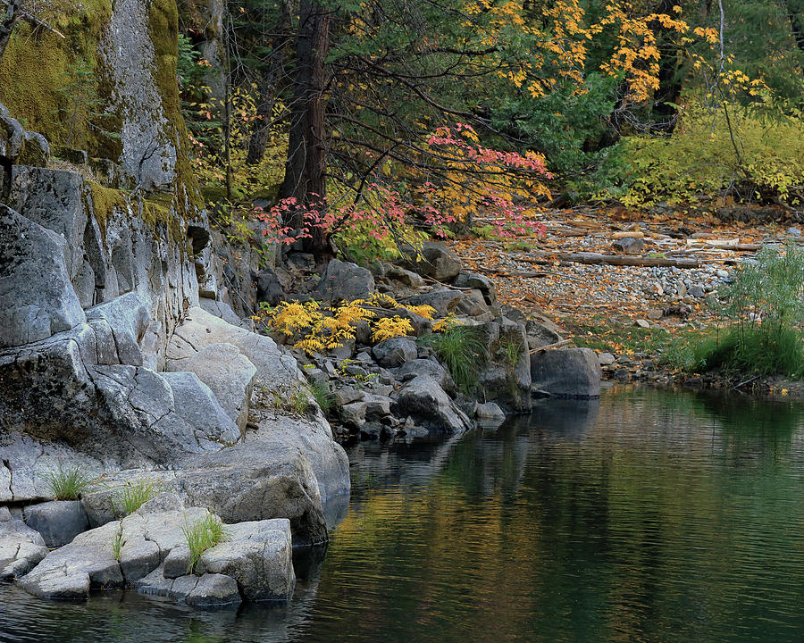 Autumn Photograph - Autumn Leaves And Merced River, Mariposa County, California by Troy Montemayor
