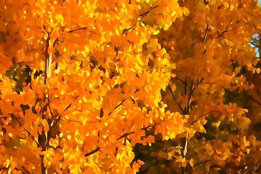Autumn Leaves by Greg Hammond