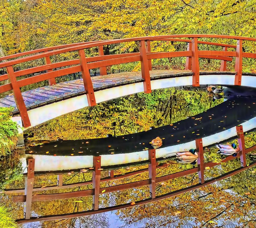 Amsterdam Photograph - Autumn Leaves by Nadia Sanowar
